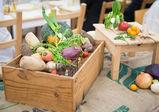 1日限定開店! たんじゅん野菜を使ったイタリアンコースを提供