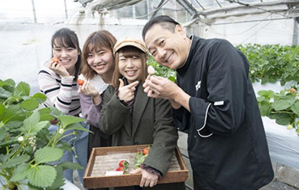 グラン パティシエコースがファーム実習へ!小田原市・中嶋農園で、9月に植えたイチゴをついに収穫♪
