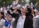 【卒業生情報!】柿本ケンサクさんがアサヒスーパードライ最新CM 「桜吹雪」篇 の監督を務めました!