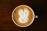 ★5 ウサギ①.jpg